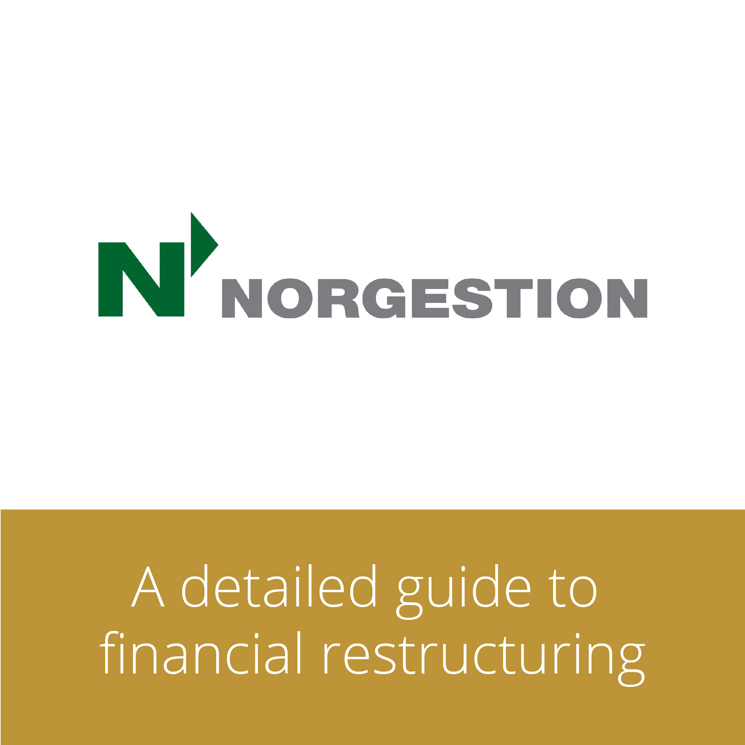 Thumbnail for Norgestion: a detailed guide to financial restructuring