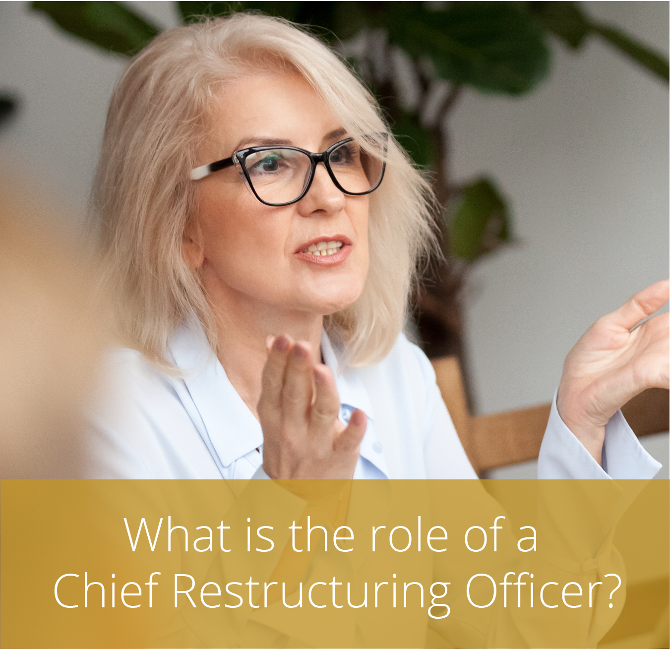 Thumbnail for What is the role of a Chief Restructuring Officer?